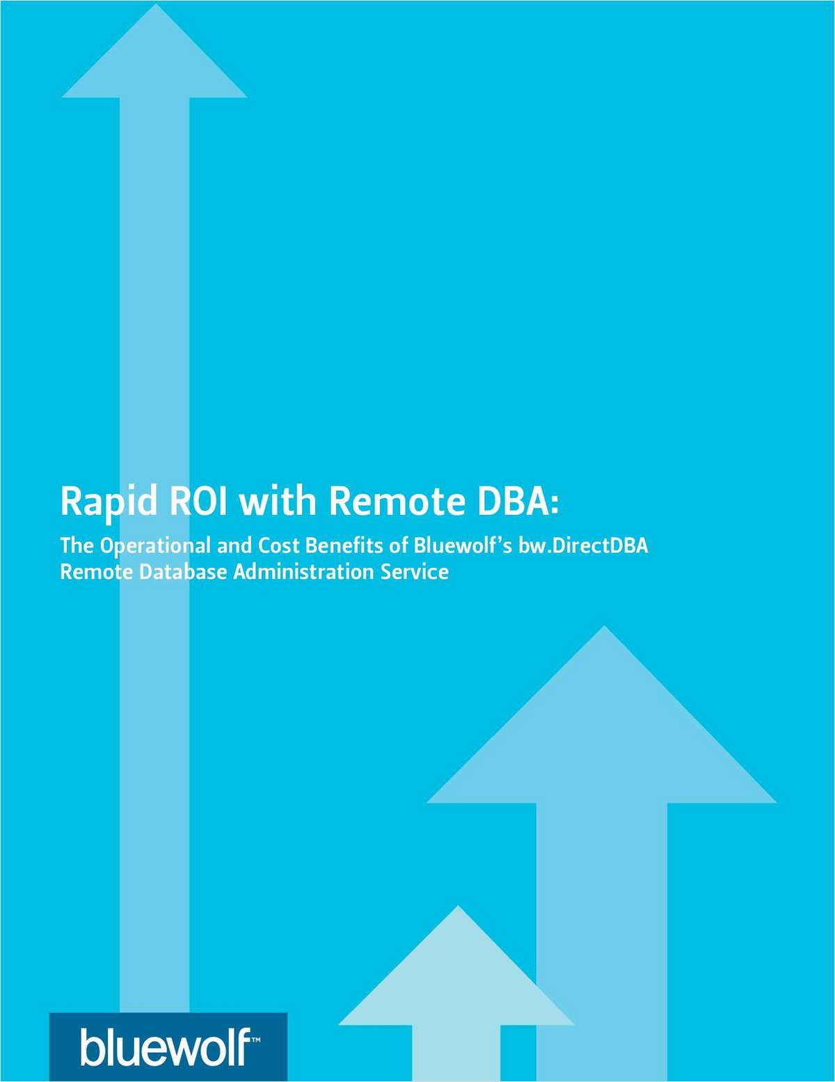 Rapid ROI with Remote DBA: The Operational and Cost Benefits of Remote Database Administration