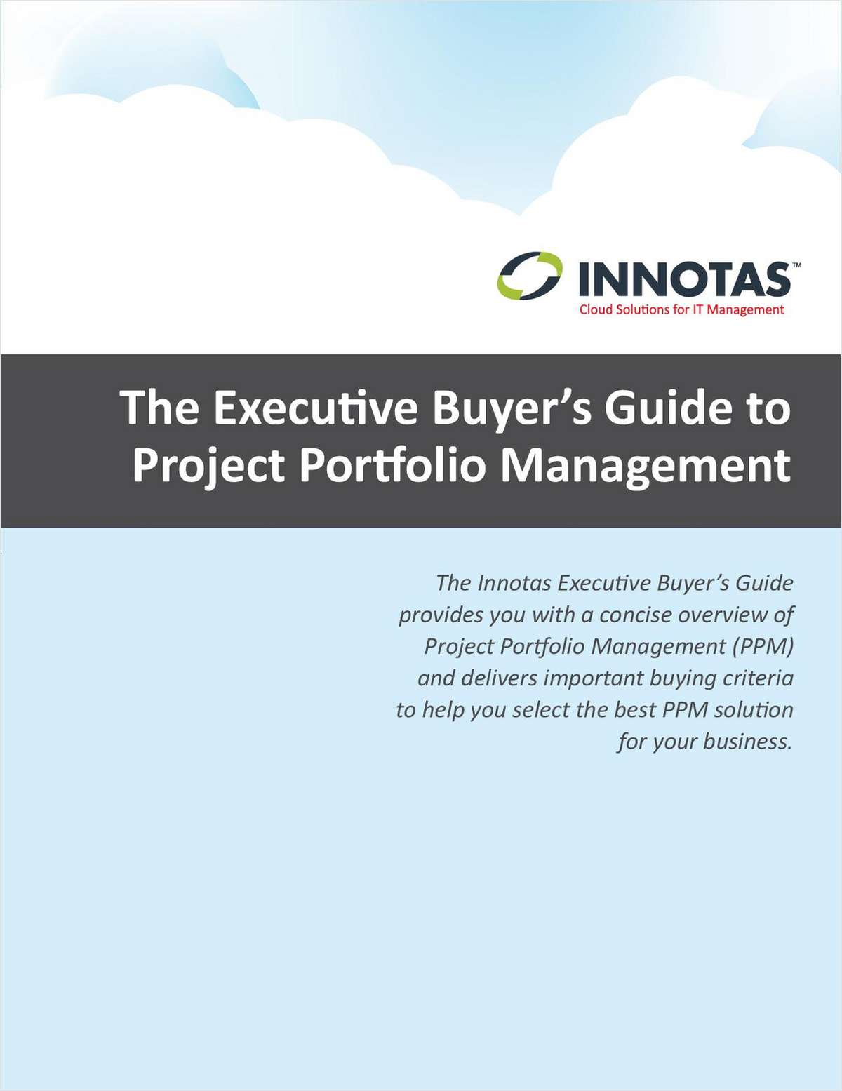 The Executive Buyer's Guide to Project Portfolio Management
