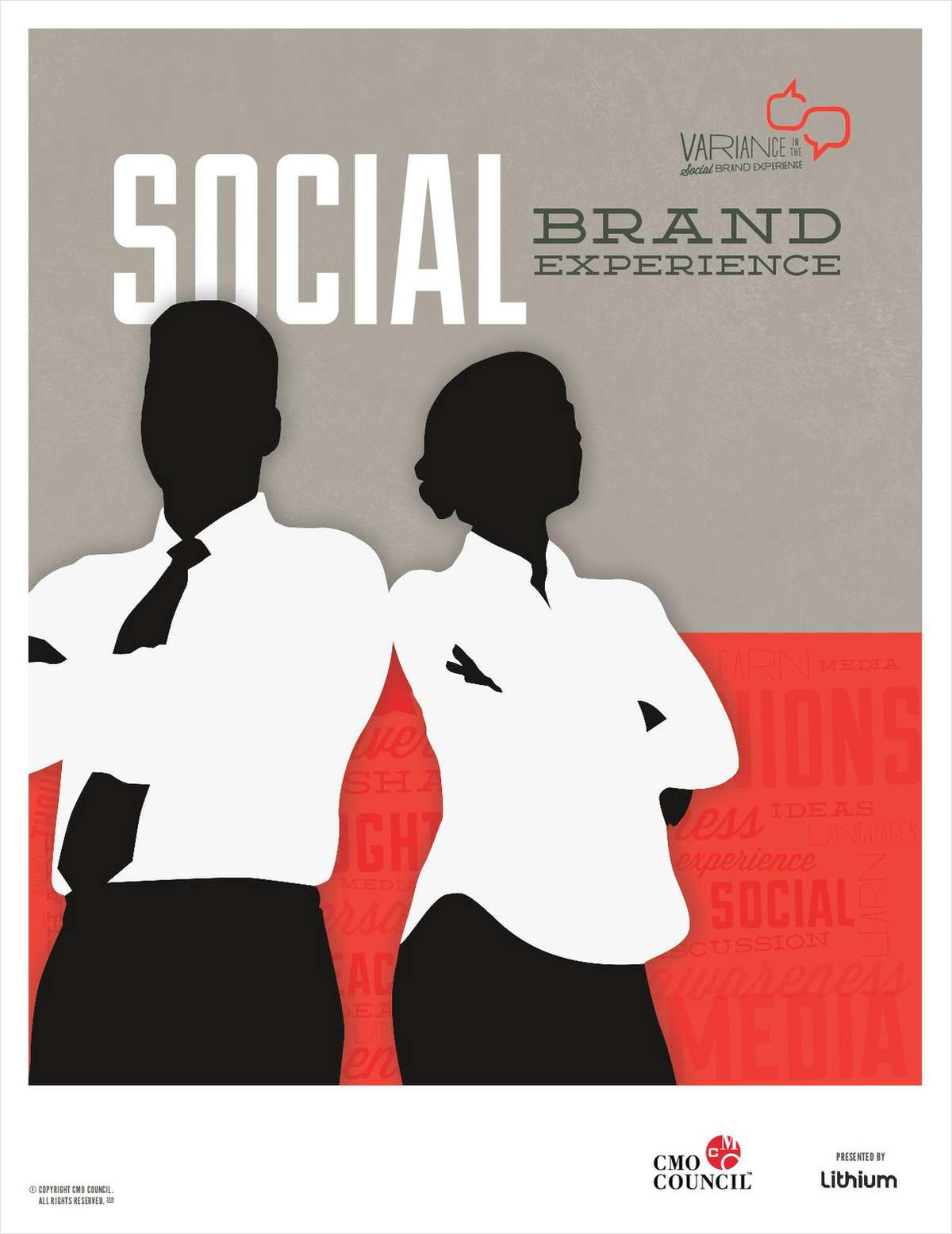Variance in the Social Brand Experience