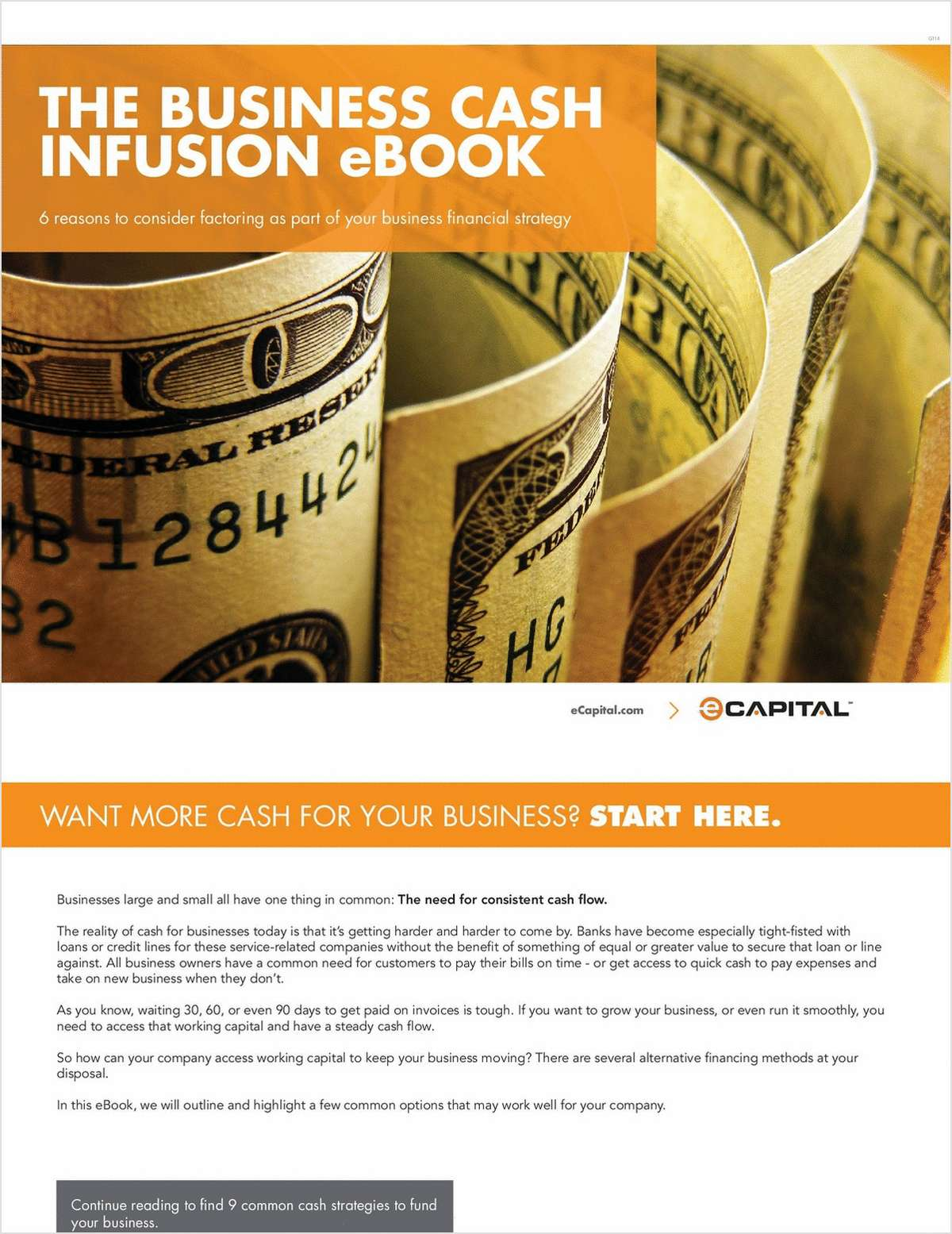 The Business Cash Infusion eBook