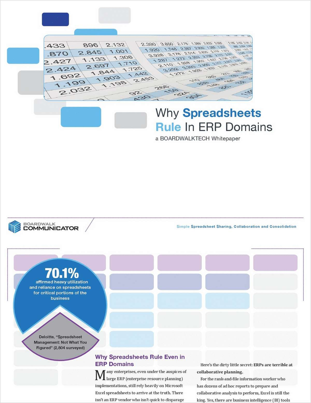 Why Do Spreadsheets Rule Even in ERP Environments?