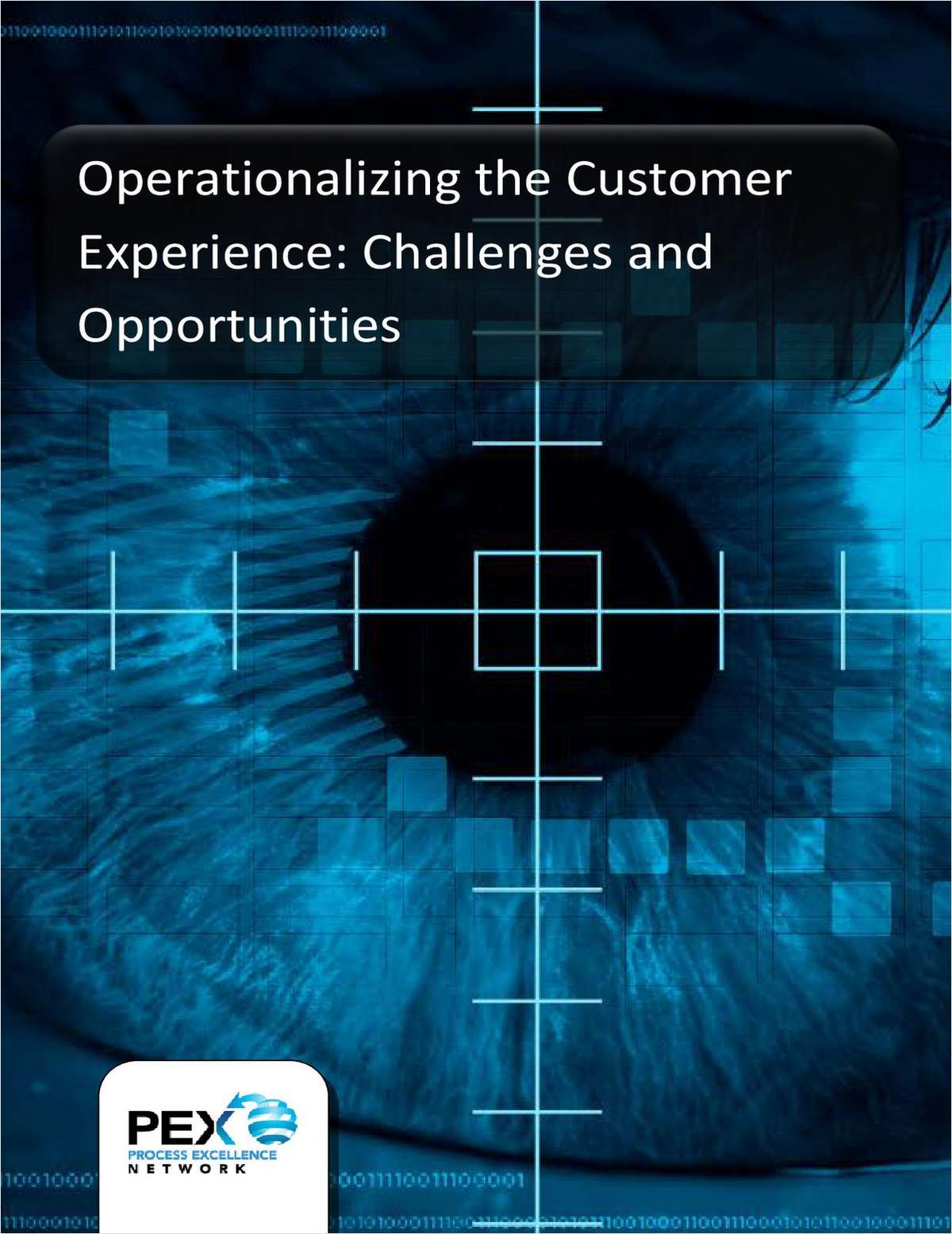 Operationalizing the Customer Experience - Survey Report