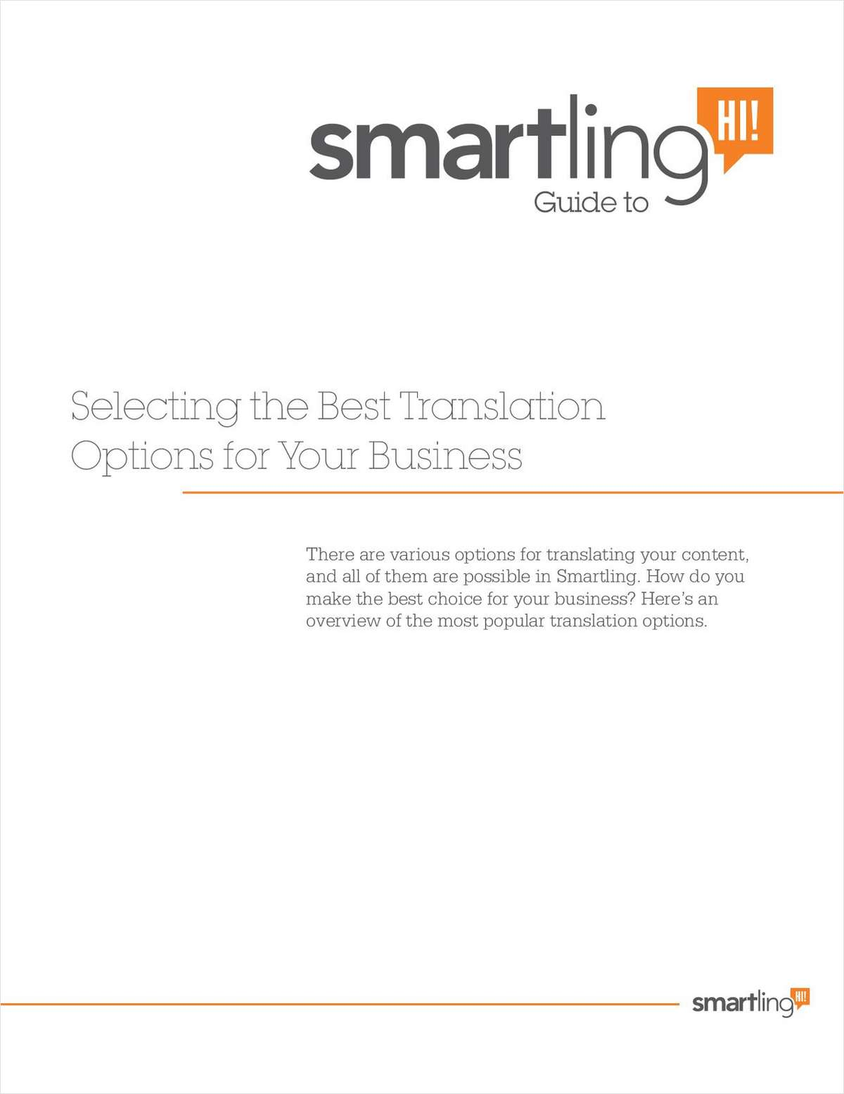 Selecting the Best Translation Options for Your Business