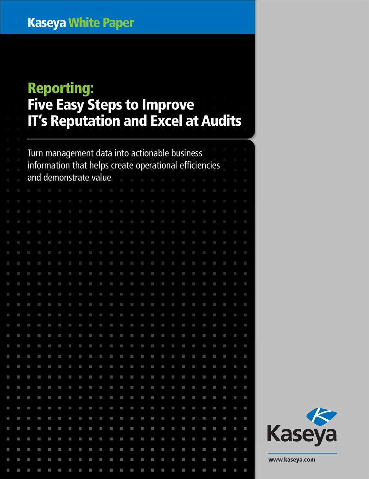Five Easy Steps to Improve IT's Reputation and Excel at Audits