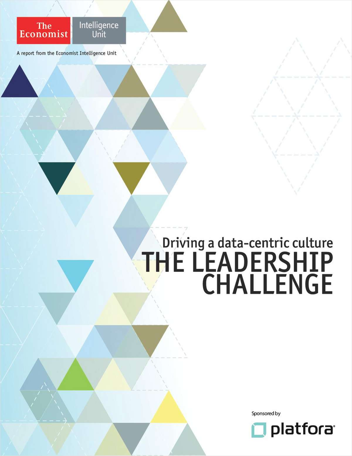 Driving a Data-centric Culture: The Leadership Challenge