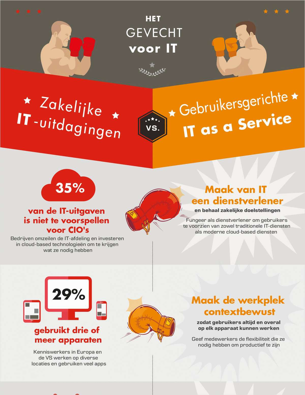 Software voor infographic