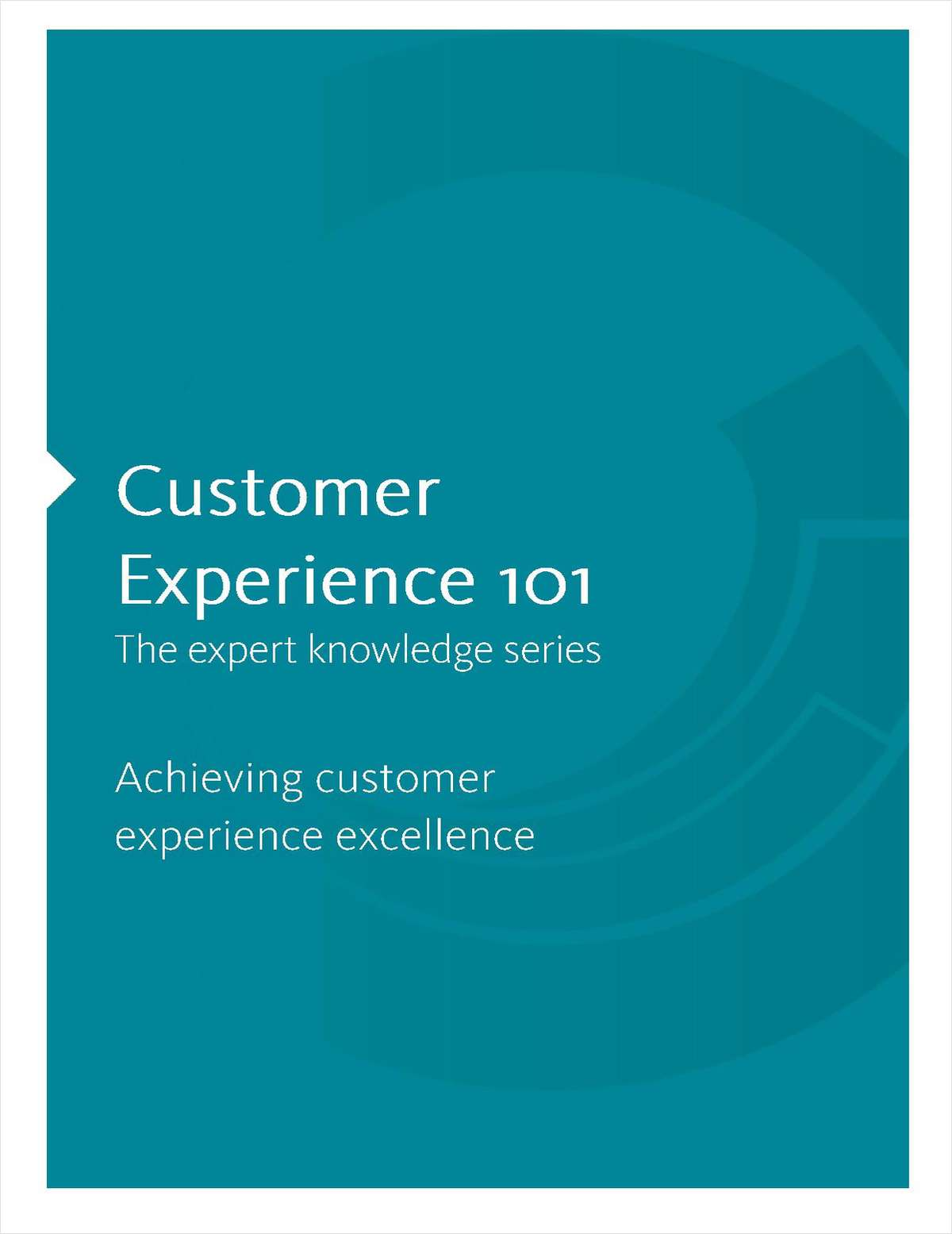 Achieving Customer Experience Excellence