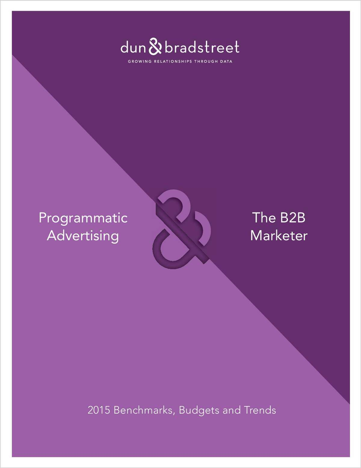 The 2015 State of B2B Programmatic Advertising