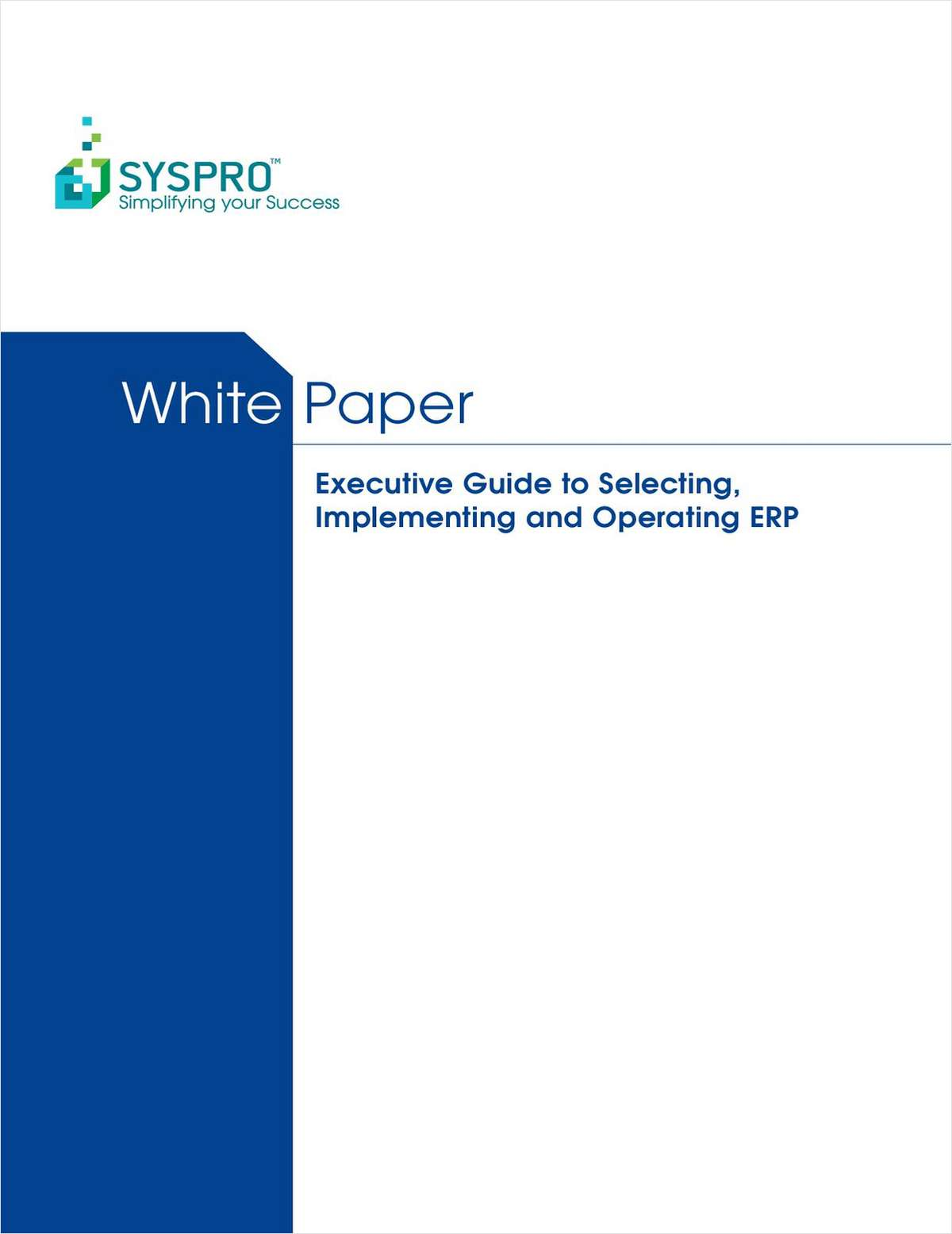Executive Guide to Selecting, Implementing and Operating ERP