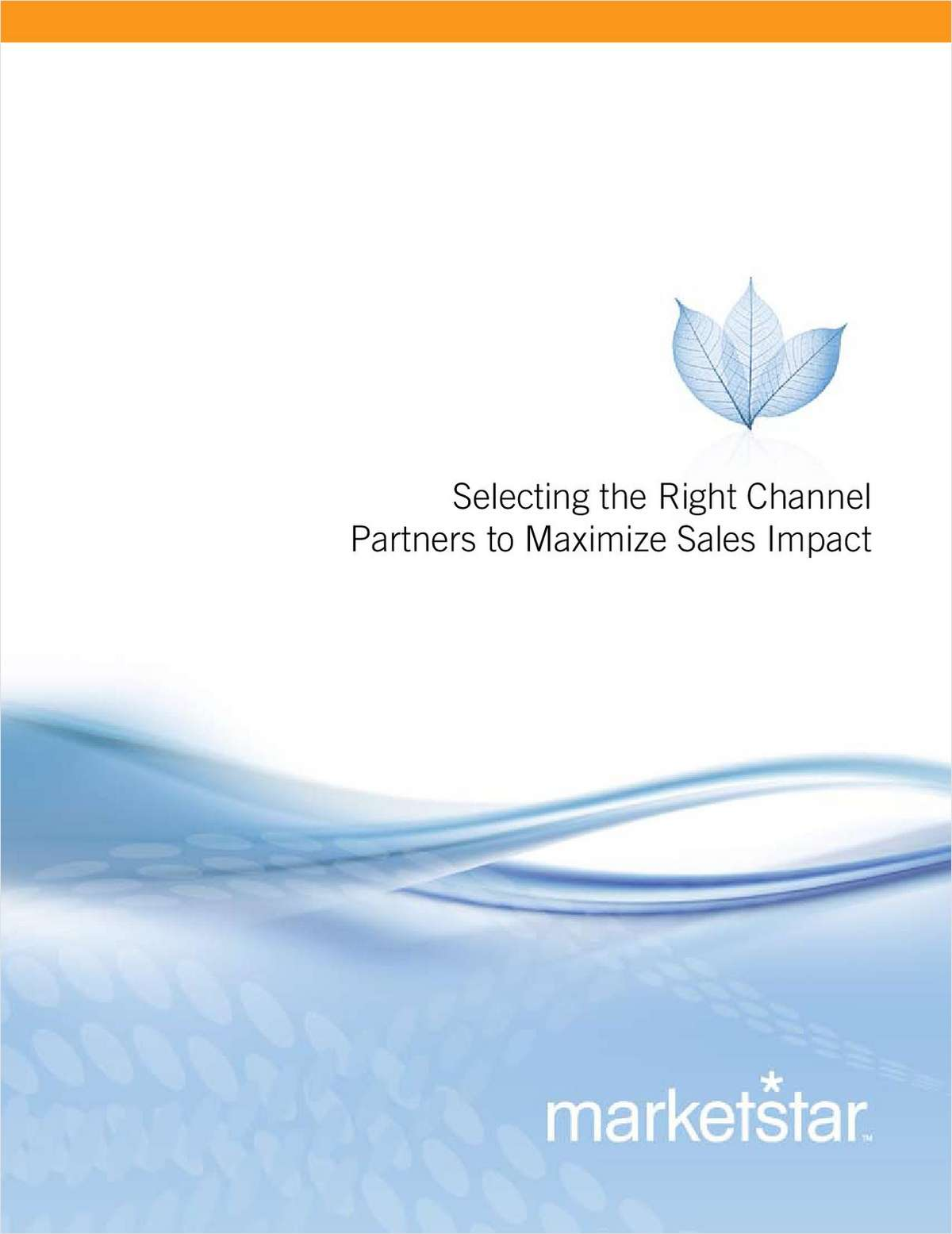 Selecting the Right Channel Partners to Maximize Sales Impact
