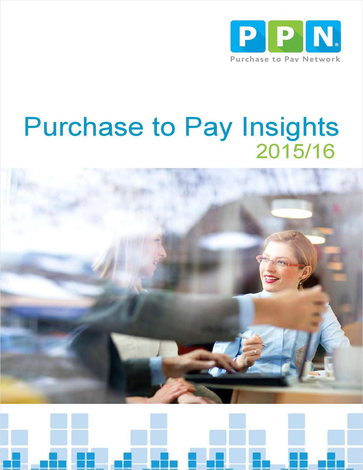 Purchase to Pay Insights: 2015-2016