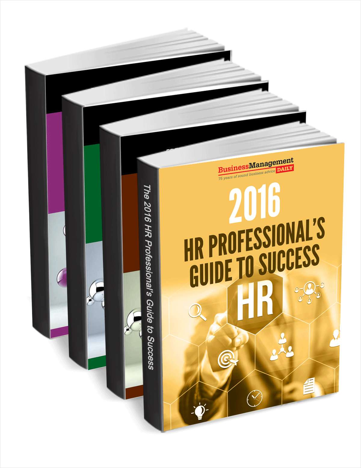The 2016 HR Professional's Guide to Success