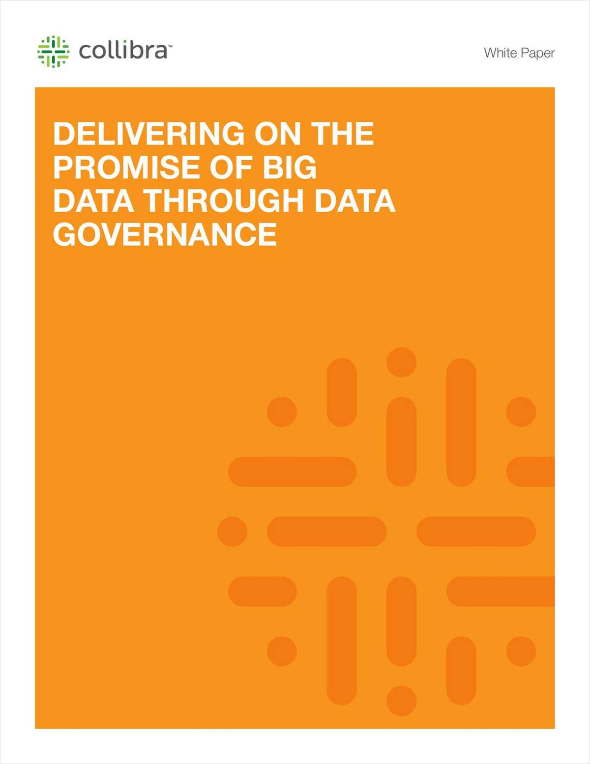 Deliver on the Promise of Big Data with Data Governance