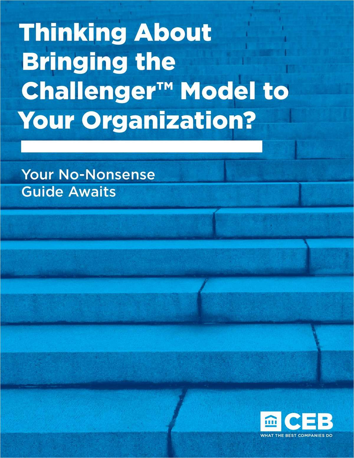 Thinking about bringing the Challenger™ Model to your organization? Your no nonsense guide awaits.
