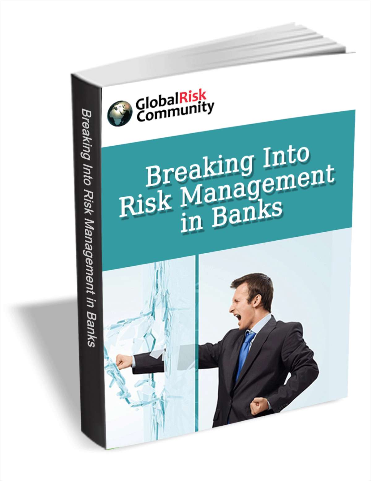 Breaking Into Risk Management in Banks (FREE eBook Training Course) A $47 Value!