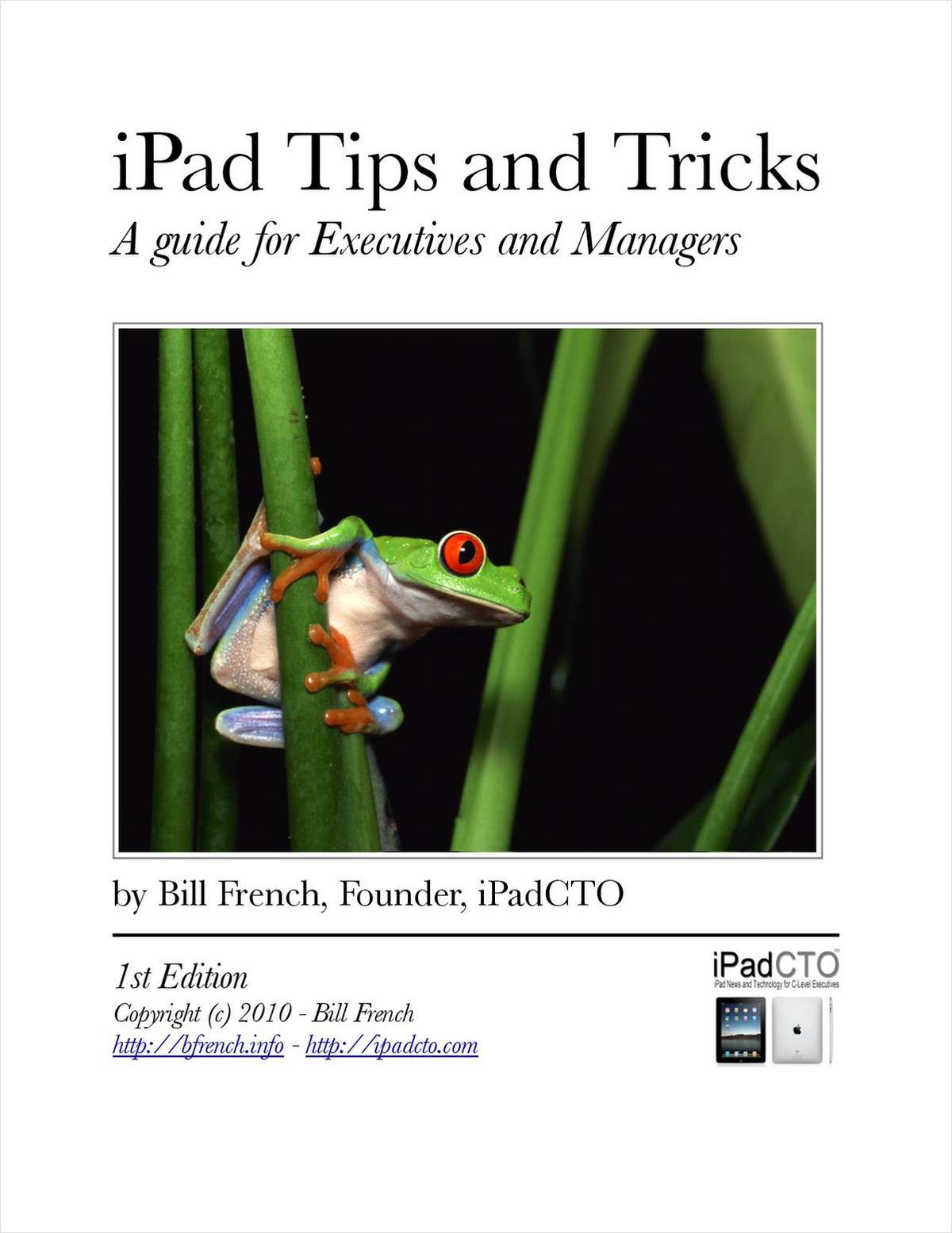iPad Tips and Tricks - A Guide for Executives and Managers