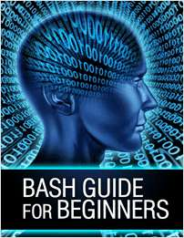 Bash Guide for Beginners