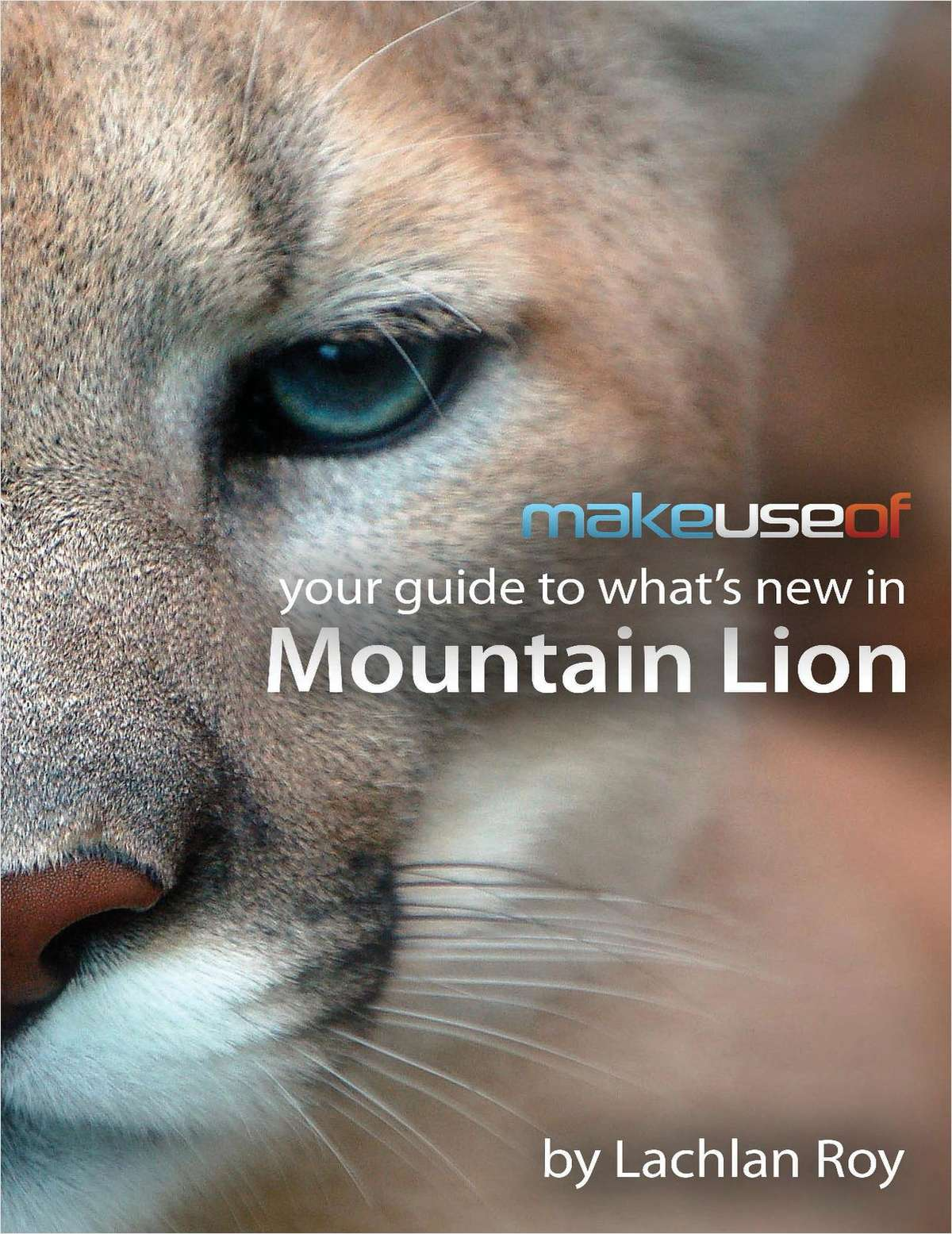 Your Guide to What's New in Mountain Lion