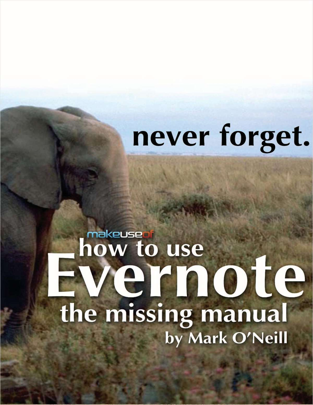 How to Use Evernote: The Missing Manual