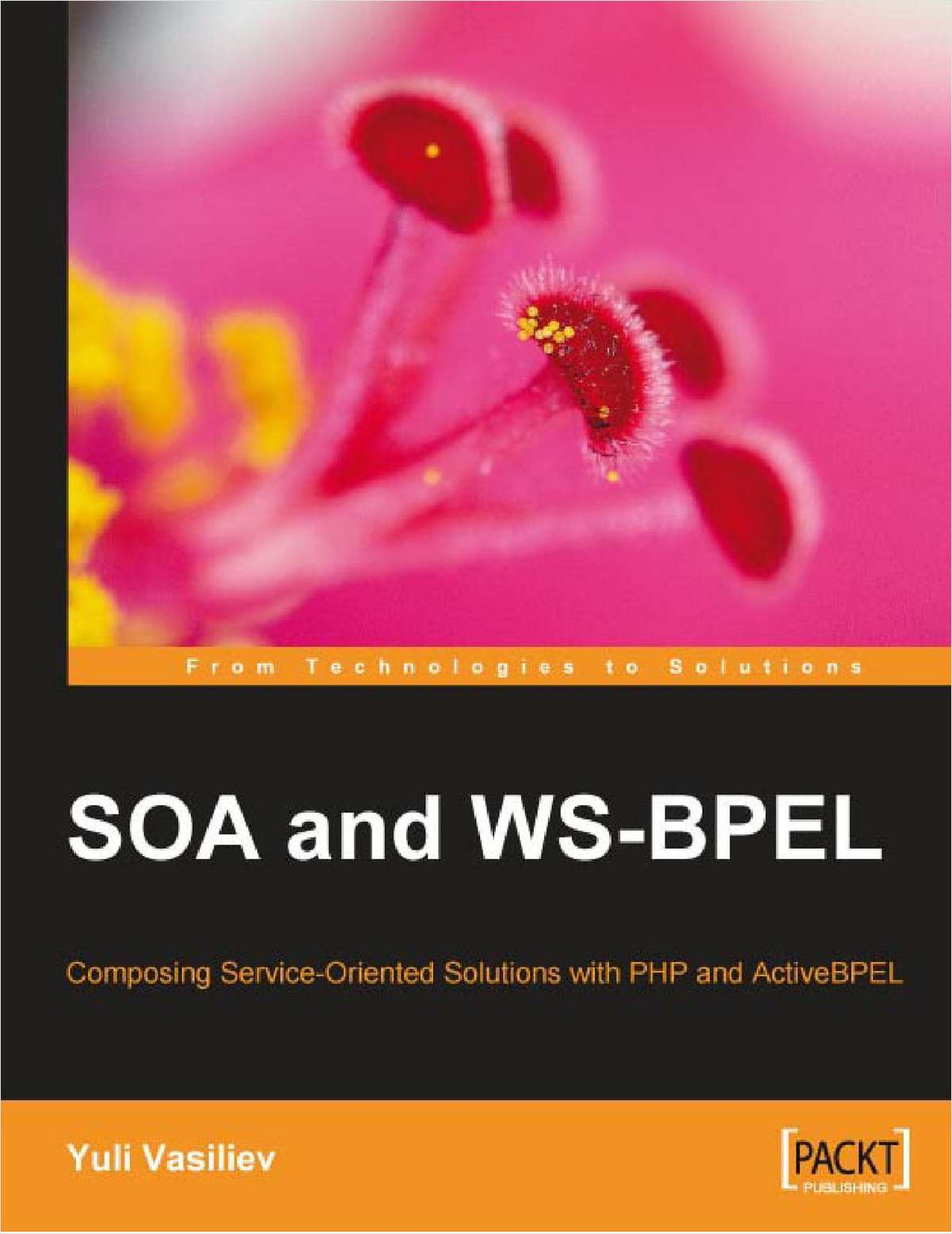 SOA and WS-BPEL: Free 316 Page eBook