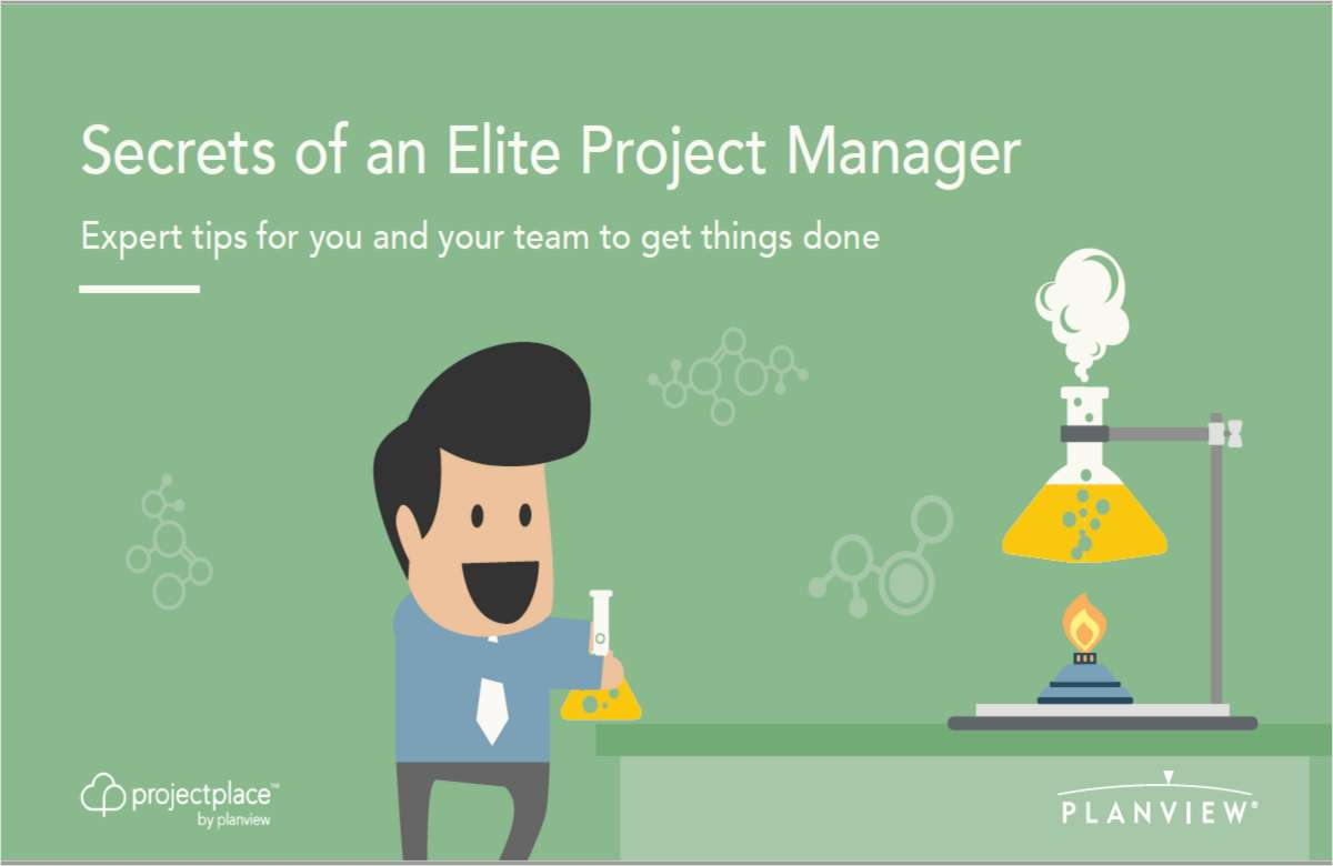 Secrets of an Elite Project Manager