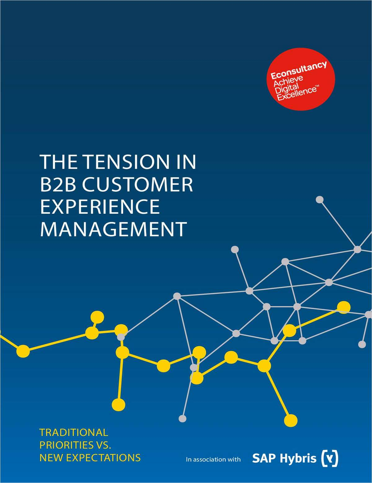 The Tension in B2B Customer Experience Management