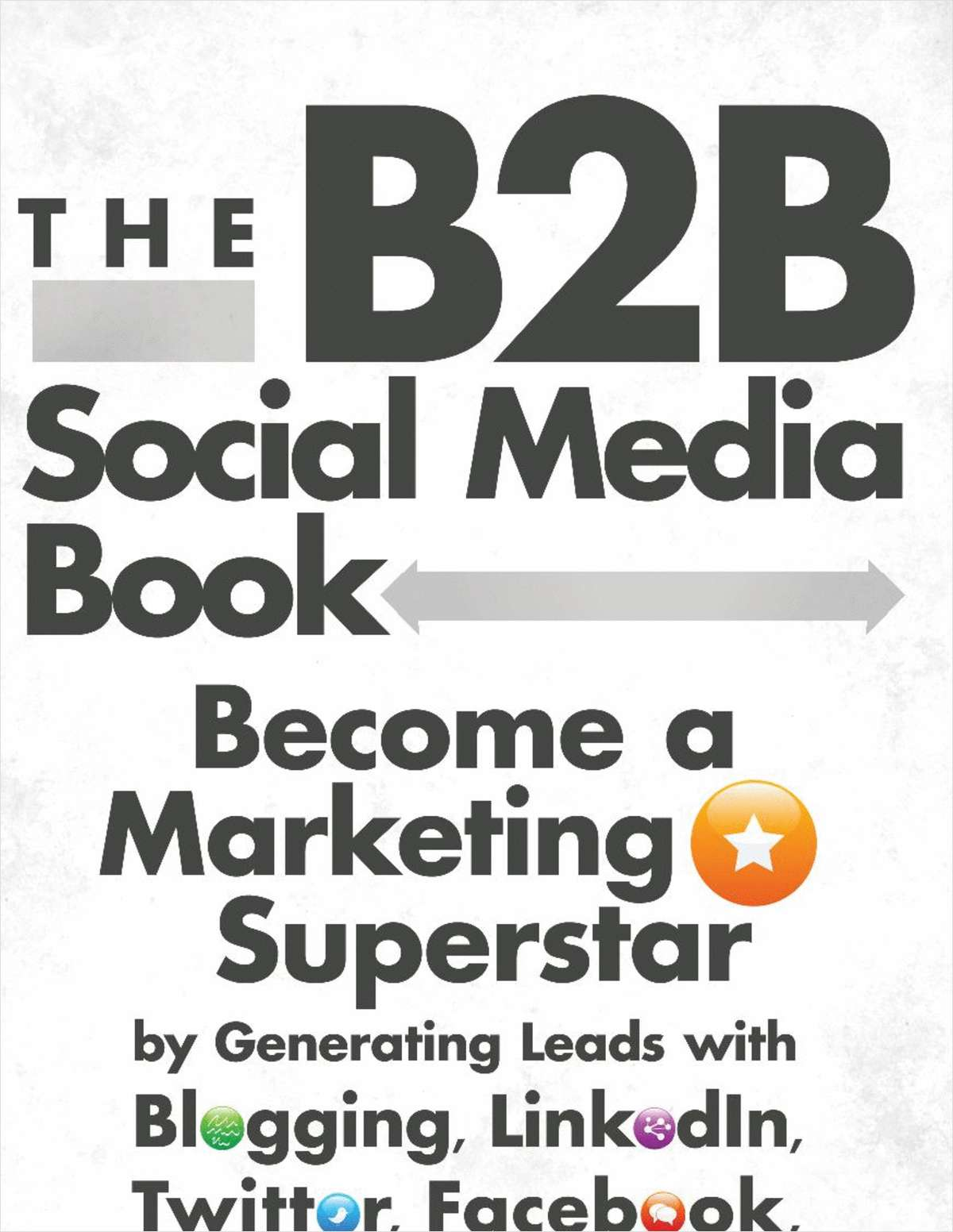 The B2B Social Media Book: Becoming a Marketing Superstar - Free Sample Chapter