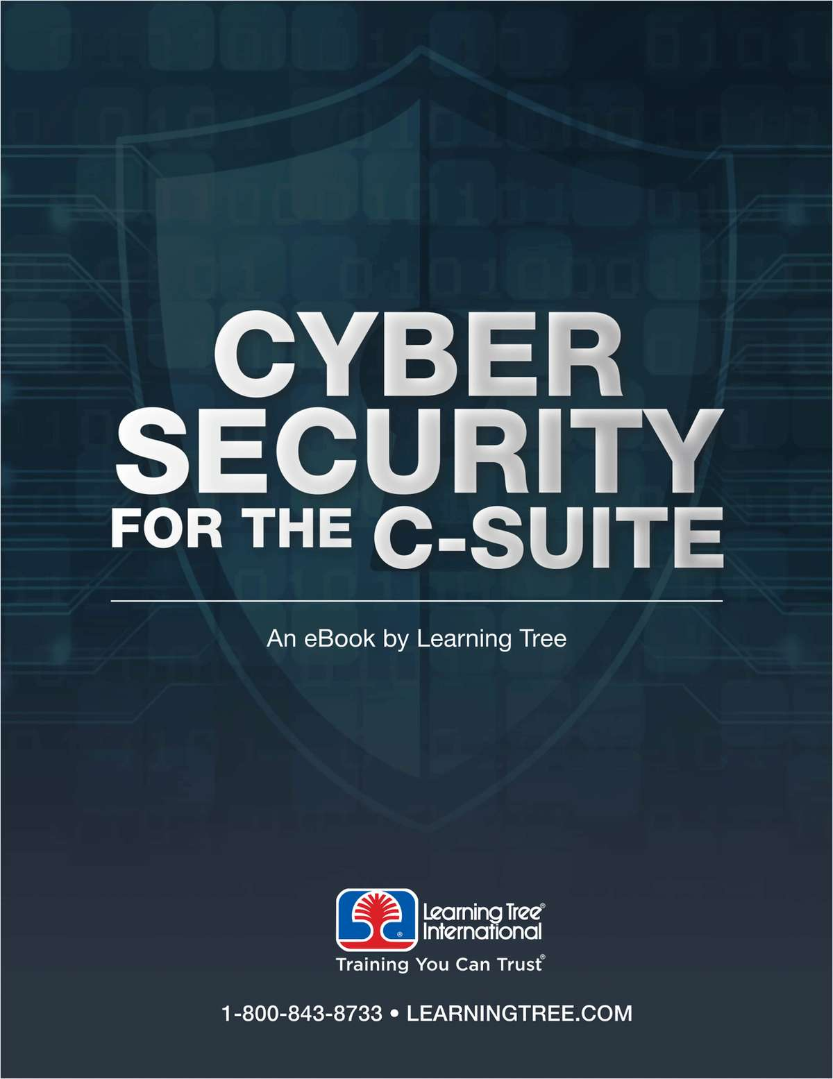 Cyber Security for the C-Suite