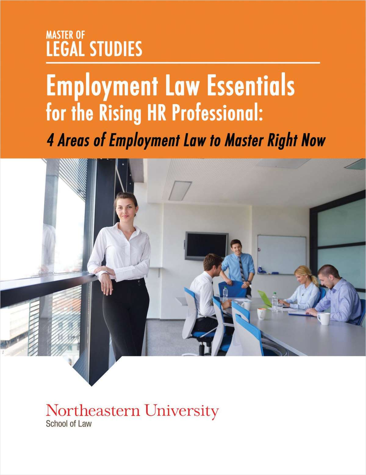 Employment Law Essentials for the Rising HR Professional:    4 Areas of Employment Law to Master Right Now