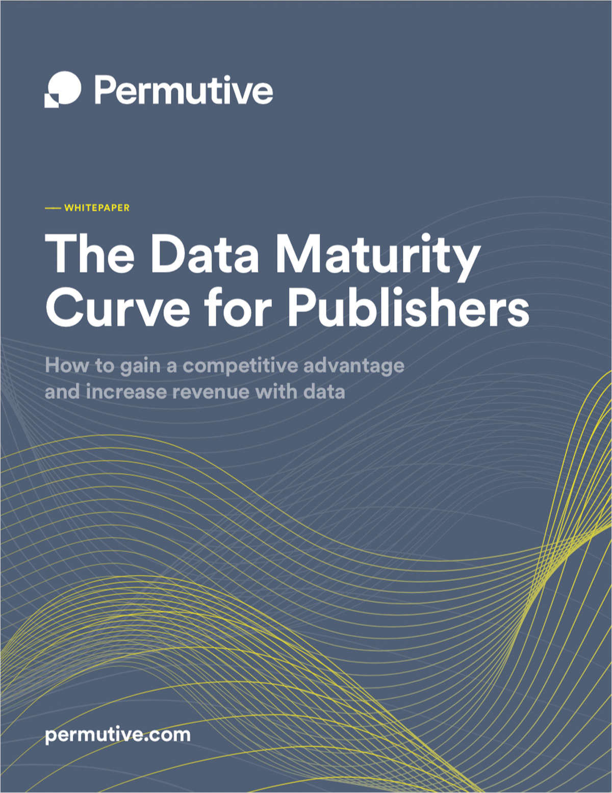 The Data Maturity Curve for Publishers