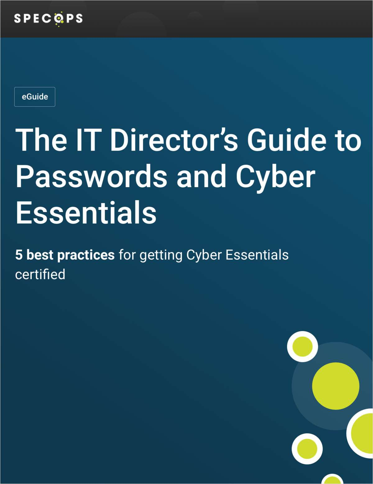 The IT Director's Guide to Passwords and Cyber Essentials