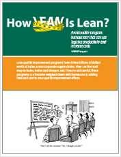 How Lean is Lean?