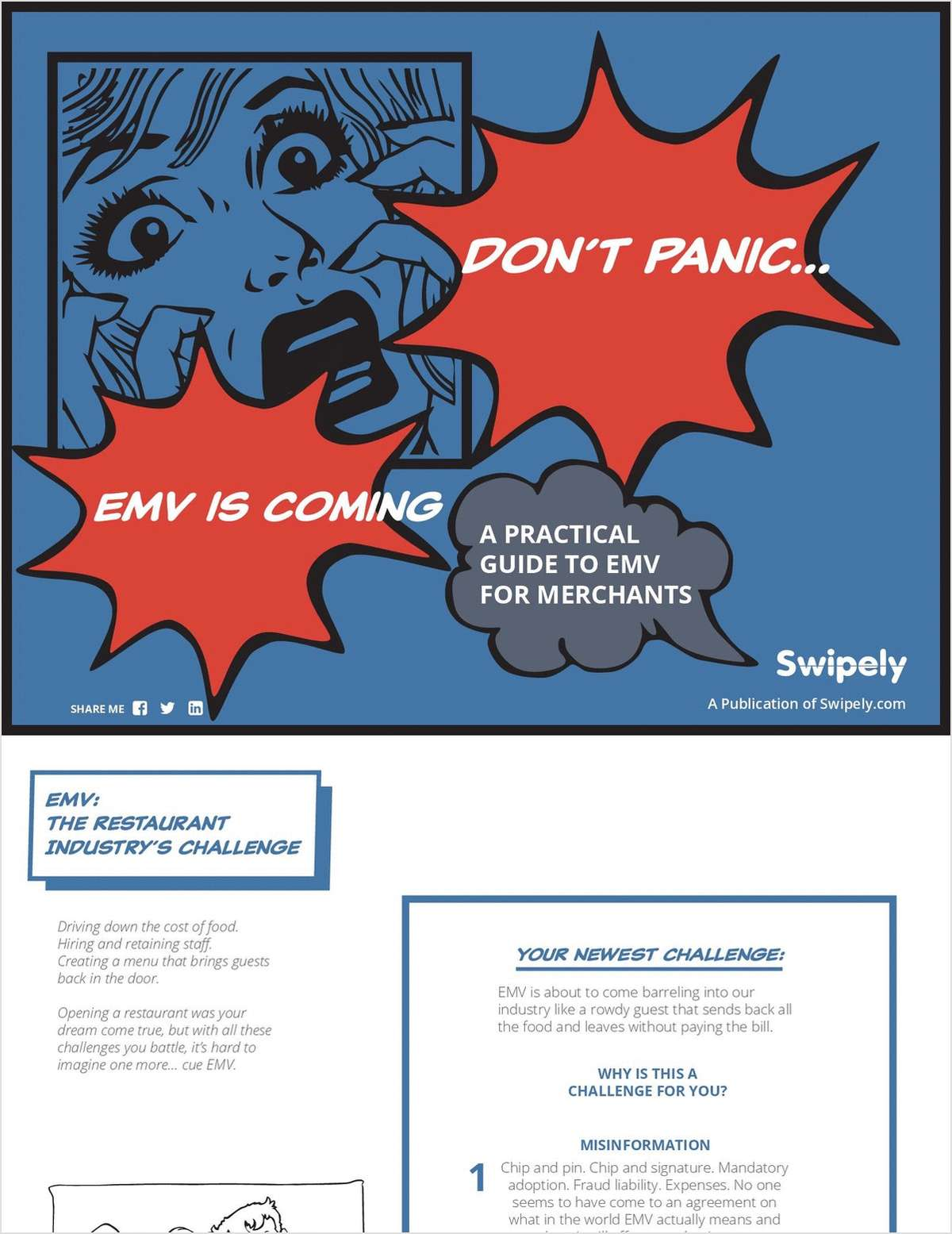 EMV Is Coming? Don't Panic  A Practical Guide to EMV for Merchants