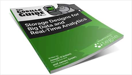 Gorilla Guide - Storage Designs for Big Data and Real-Time Analytics