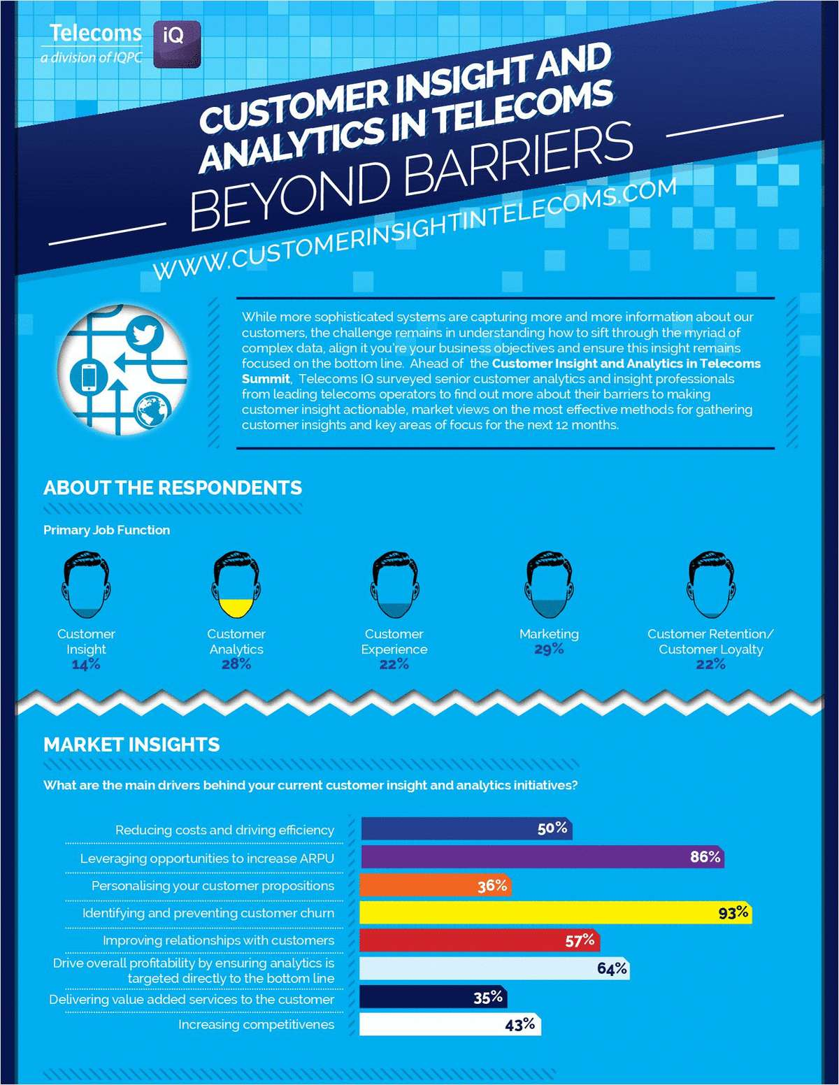 Customer Insight and Analytics in Telecoms: Beyond Barriers