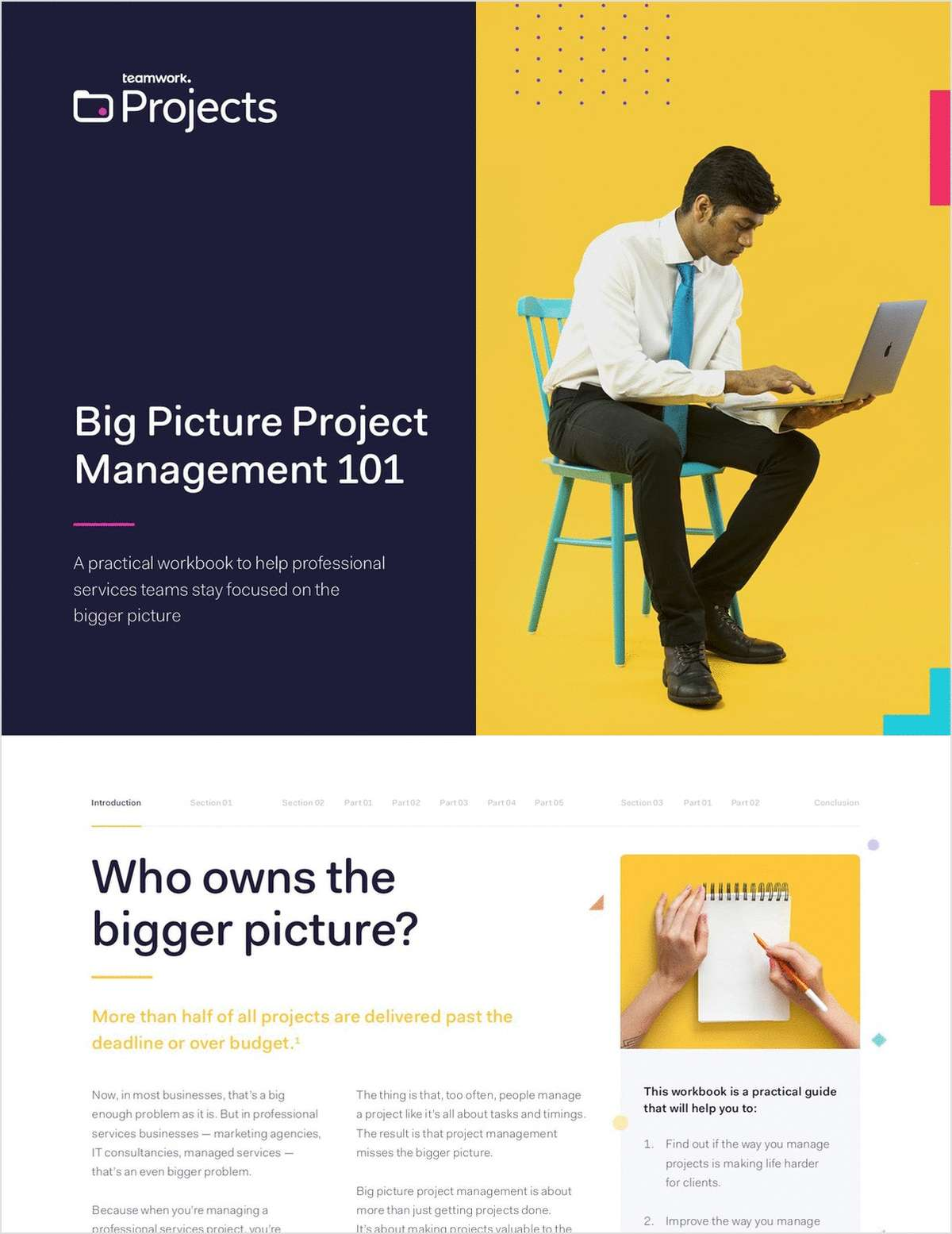 Big Picture Project Management 101