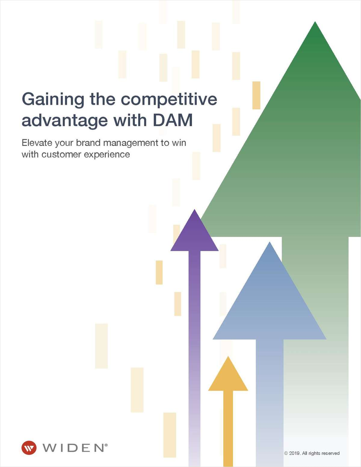 Gaining the Competitive Advantage with DAM