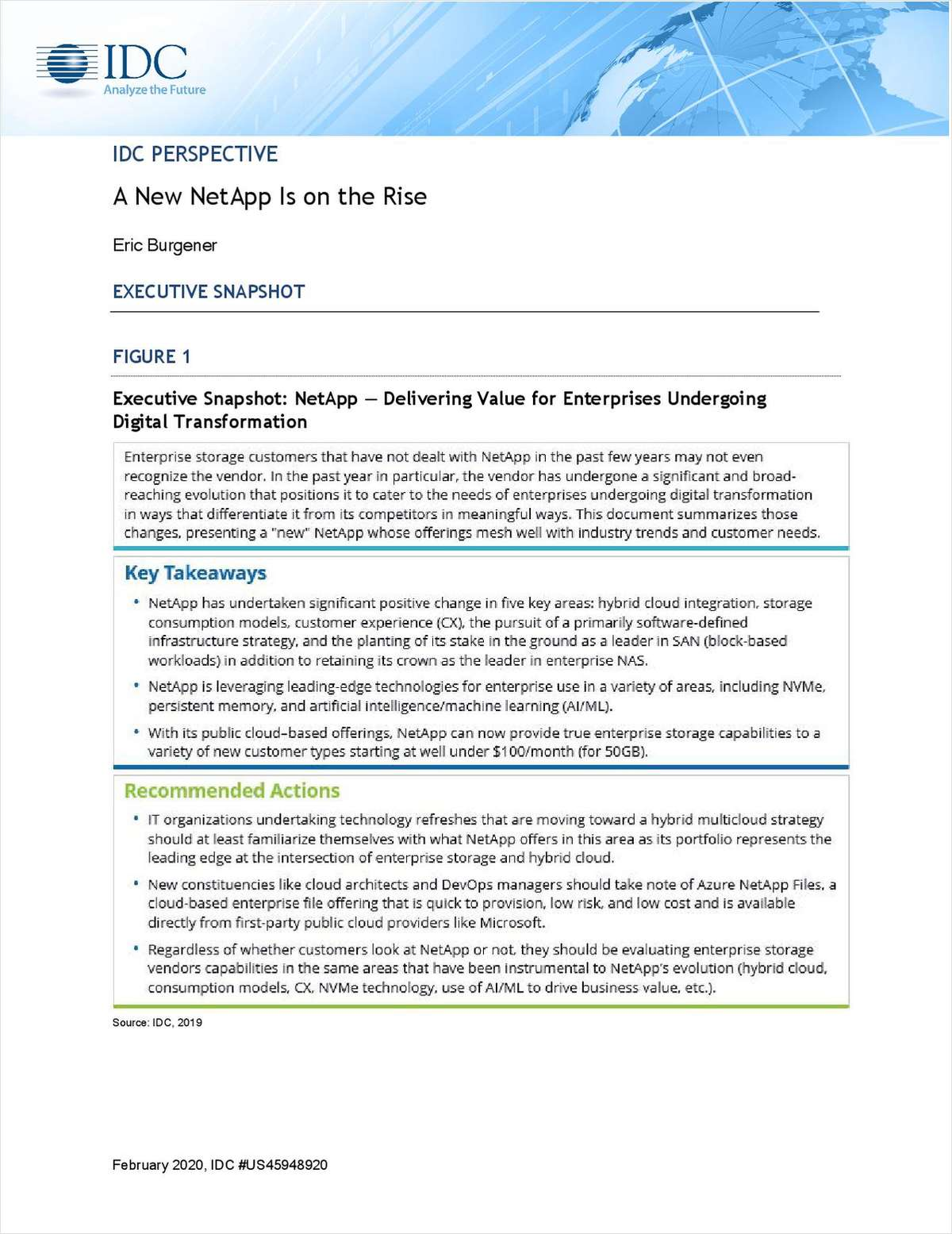 IDC Perspective: A New NetApp Is on the Rise