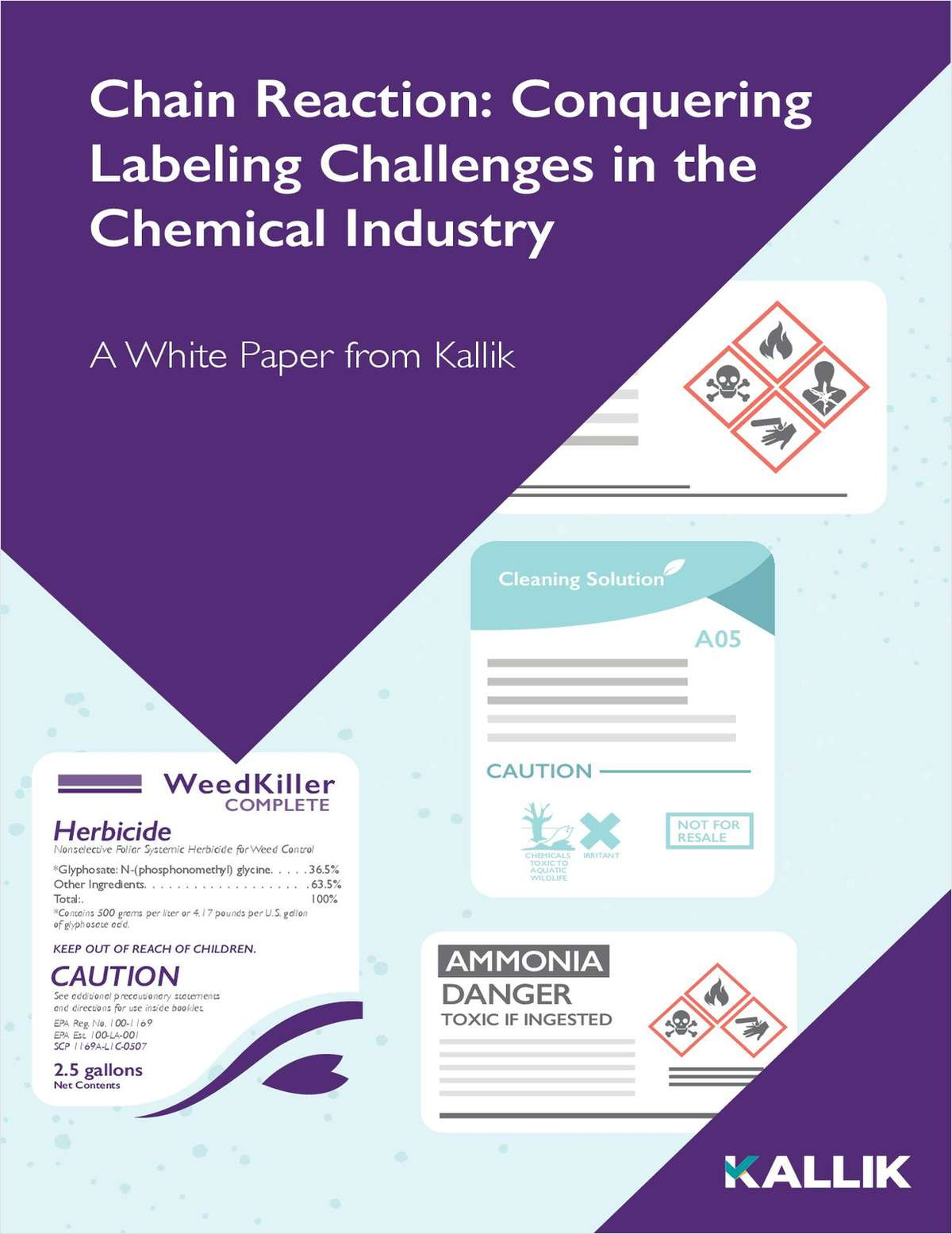 Chain Reaction: Conquering Labeling Challenges in the Chemical Industry
