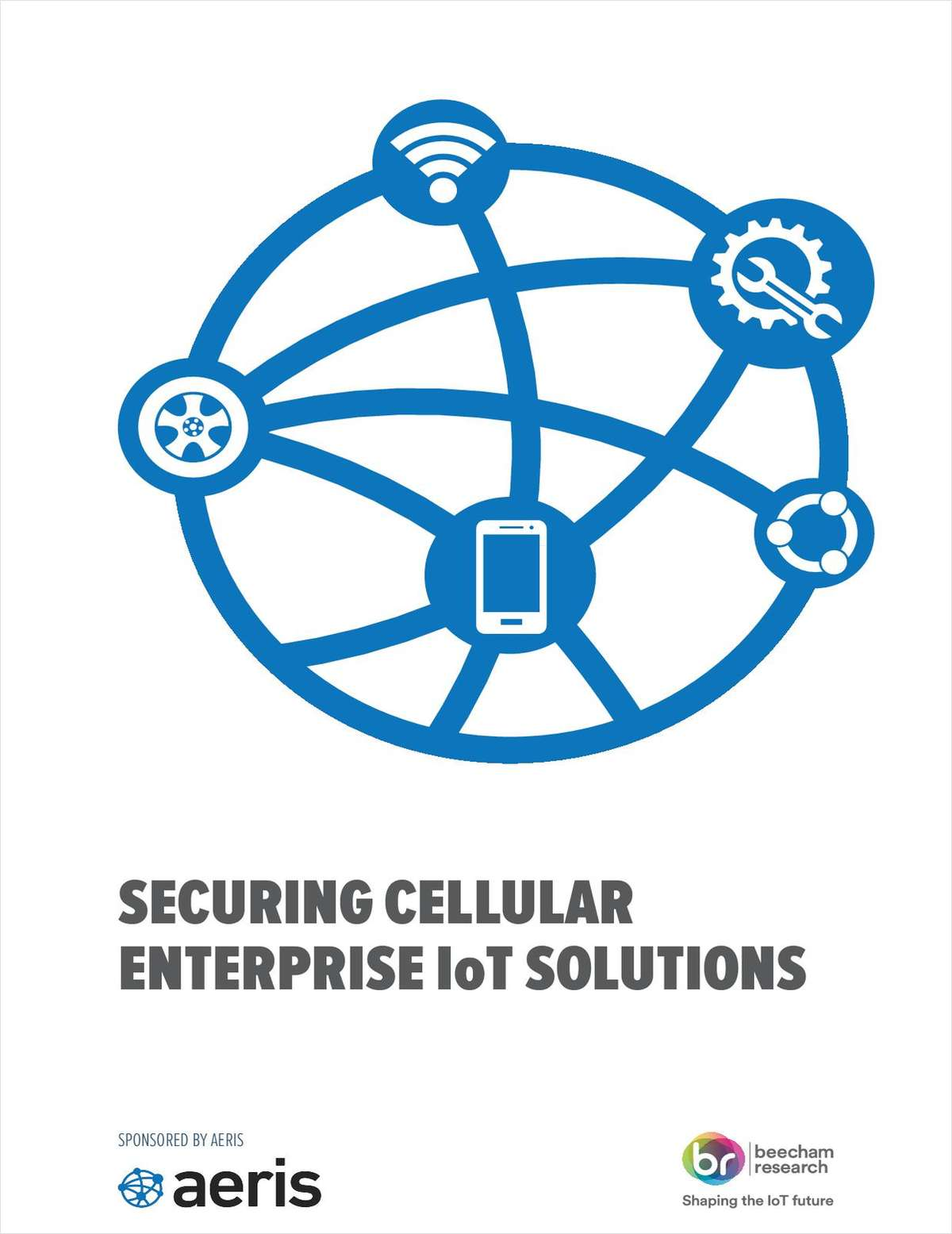 Securing Cellular Enterprise IoT Solutions