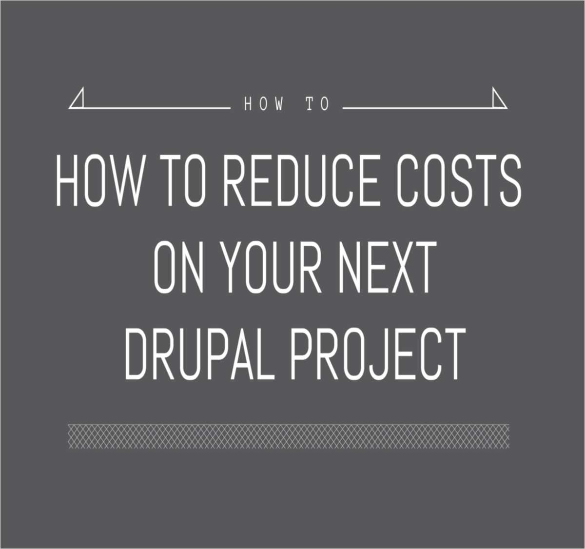 How to Dramatically Reduce Costs on Your Next Drupal Project