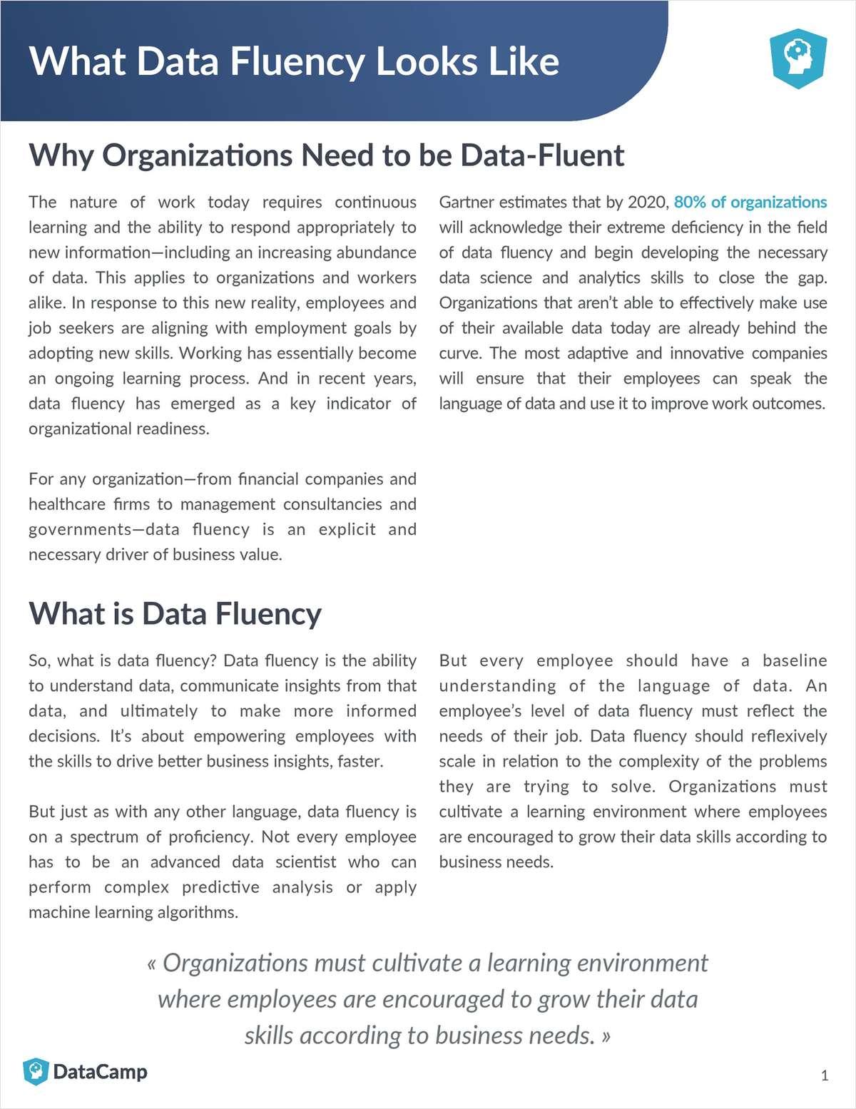 What Data Fluency Looks Like