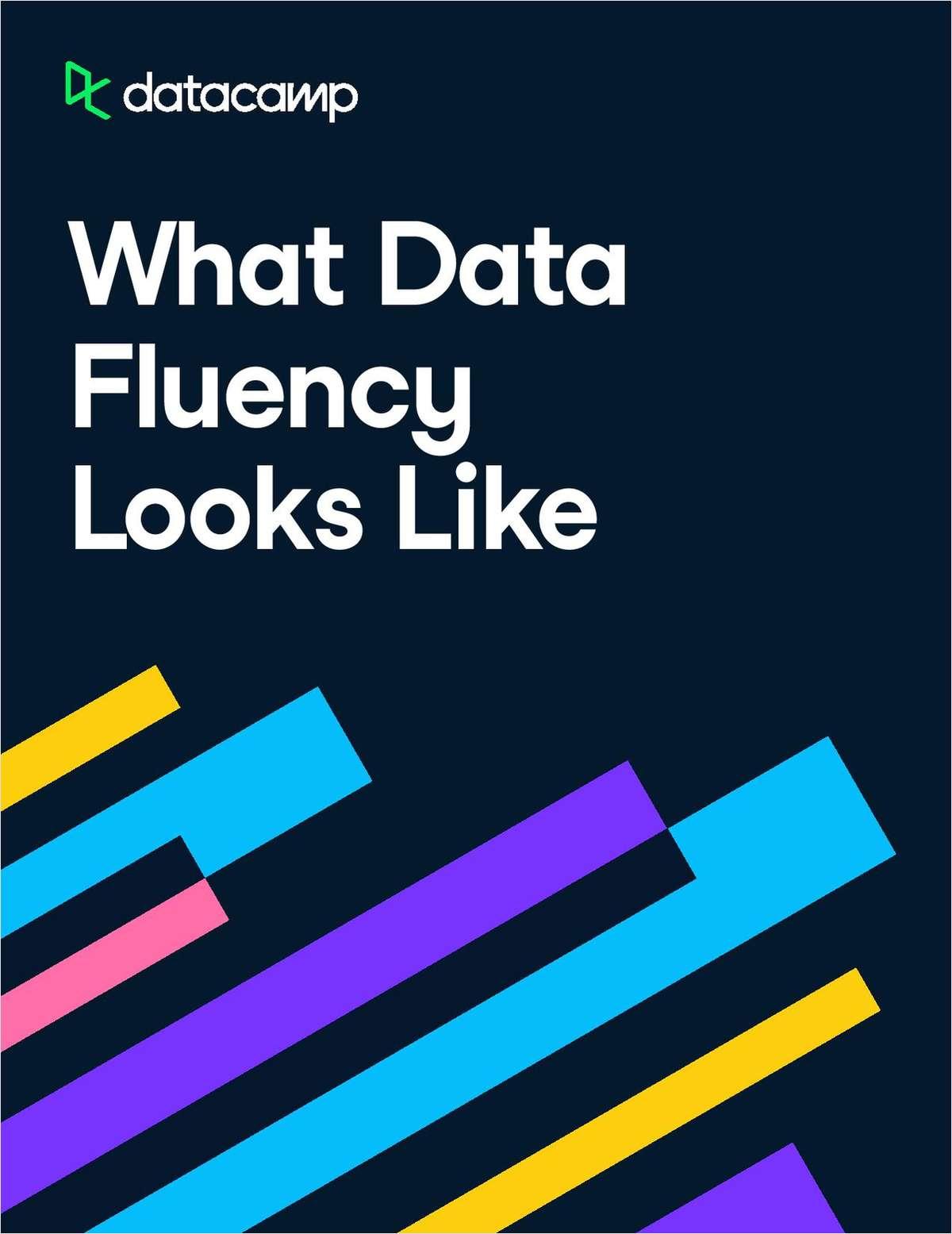 Whitepaper | What Data Fluency Looks Like