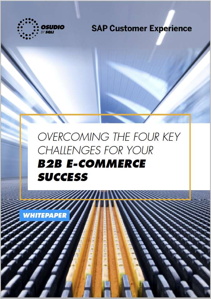 The B2B Guide to the 4 key E-commerce Challenges of Today