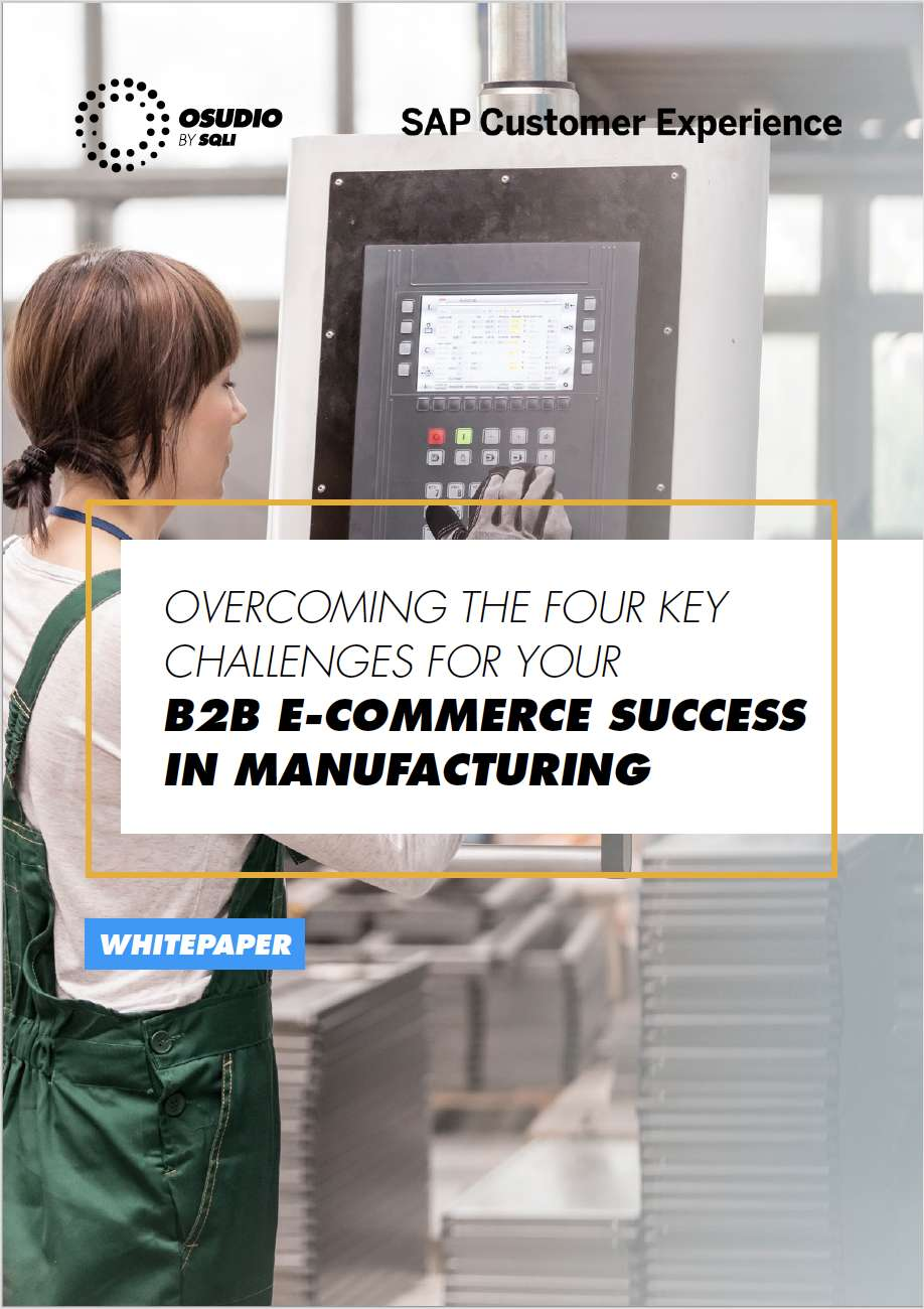 B2B E-COMMERCE SUCCESS FOR BRAND MANUFACTURERS