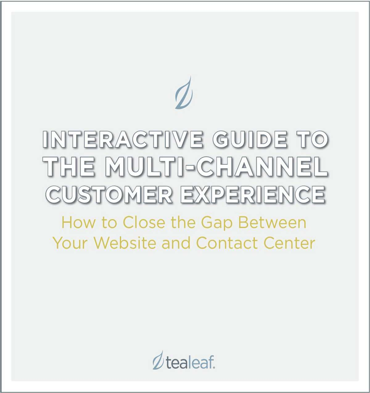 Guide to the Multi-Channel Customer Experience
