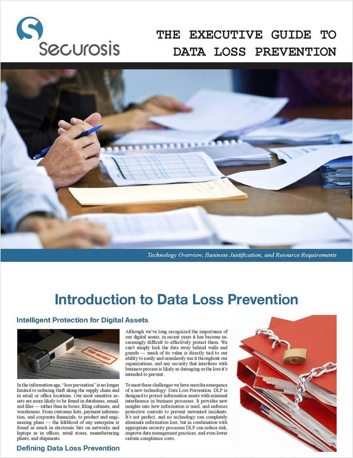 The Executive Guide to Data Loss Prevention