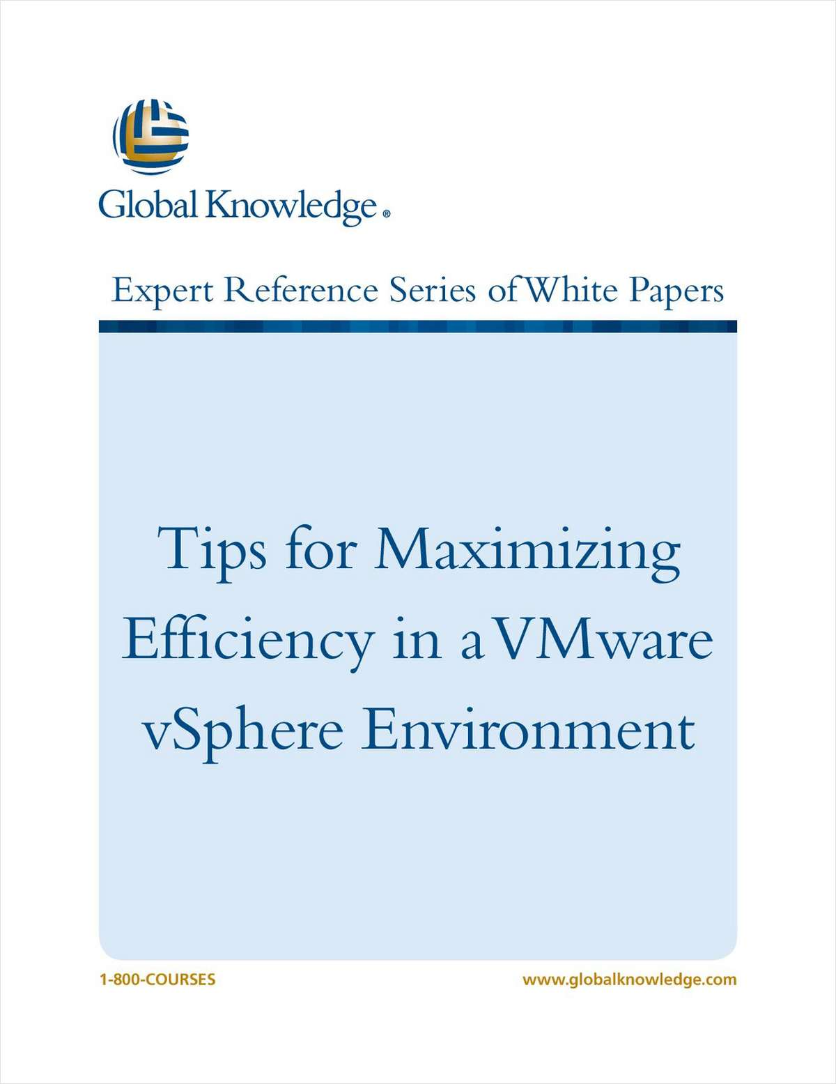 Tips for Maximizing Efficiency in a VMware vSphere Environment