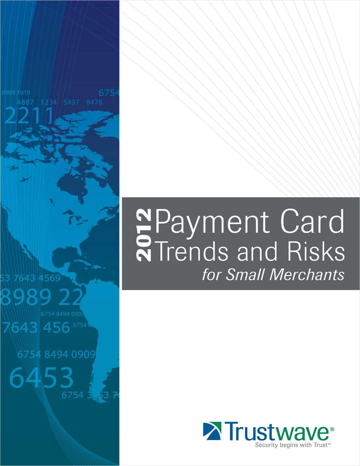 Payment Card Trends and Risks for Small Merchants