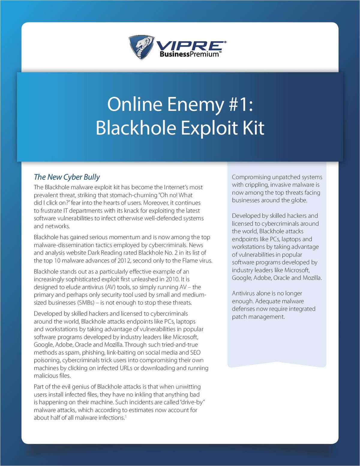 Online Enemy #1: Blackhole Exploit Kit